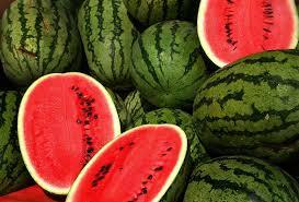 Watermelon - Tarbooj