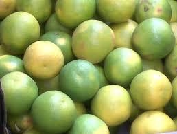 Sweet Lime Premium - Mausambi