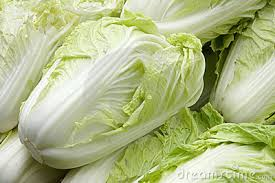 chinese Cabbage - Chinese Pattagobhi