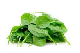 Spinach - Paalak