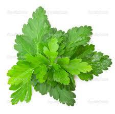parsley 100gm