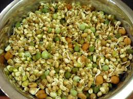 Sprout Mix (200 Gms.)